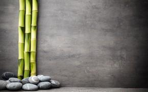 Картинка камни, бамбук, stones, bamboo, spa, zen
