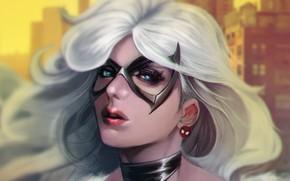 Картинка девушка, лицо, маска, арт, marvel, Spider-Man, black cat