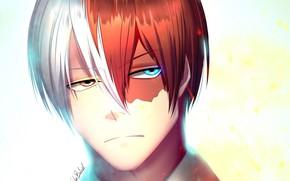 Картинка портрет, аниме, арт, парень, Boku no Hero Academia, Моя геройская акадеимя, Todoroki shouto