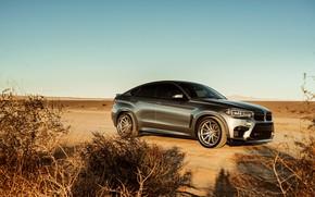 Картинка дизайн, пустыня, BMW X6M