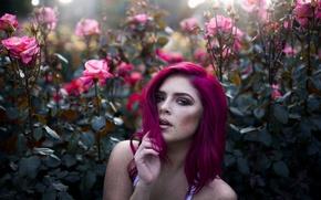Картинка девушка, цветы, куст, розы, веснушки, малиновые волосы