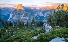 Картинка Природа, Горы, Лес, Пейзаж, Долина