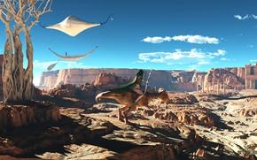 Картинка дерево, скалы, пустыня, аппарат, Urum red desert