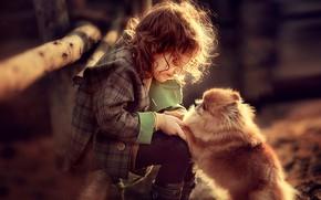 Картинка игра, собака, девочка, малышка, ребёнок, пёс, шпиц, Darya Stepanova