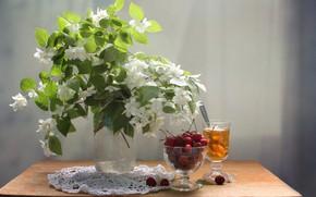 Картинка вишня, чай, Букет, натюрморт, жасмин
