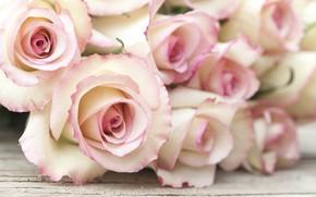 Картинка цветы, розы, букет, розовые, wood, pink, flowers, roses