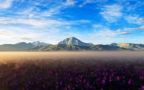 Картинка горы, природа, красота