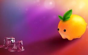 Обои лед, апельсин, юмор