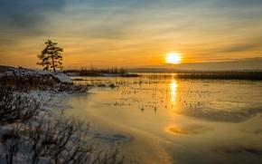 Обои зима, холод, закат, озеро, природа