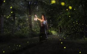 Картинка лес, девушка, волшебство, магия, огоньки, фонарик