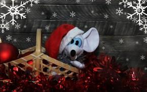 Картинка снежинки, игрушка, крыса, новогоднее настроение