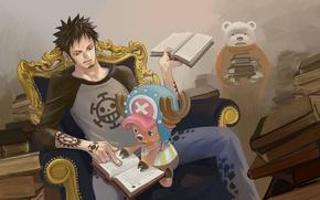 Картинка книги, аниме, арт, парень, One Piece