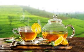 Картинка зелень, листья, солнце, пейзаж, стол, фон, лимон, чай, поля, горячий, чайник, пар, чашка, доска, блюдце, …