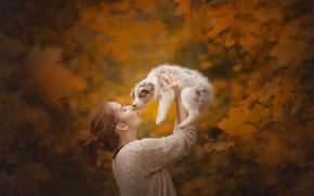 Картинка осень, девушка, щенок