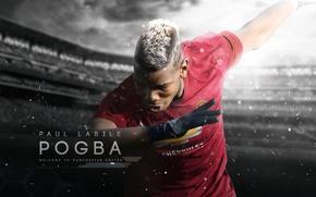 Обои wallpaper, sport, stadium, football, Manchester United, player, Paul Pogba