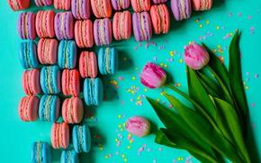 Картинка тюльпаны, розовые, pink, tulips, sweet, dessert, macaroon, macaron, макаруны