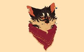 Картинка кот, морда, платок