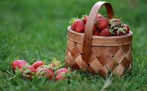 Картинка трава, ягоды, клубника, лукошко
