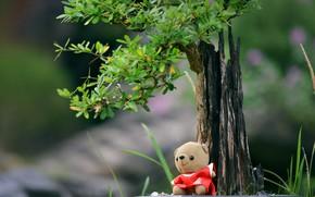 Картинка дерево, игрушка, медвежонок