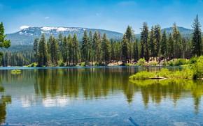 Картинка зелень, лес, небо, солнце, деревья, горы, озеро, США, кусты, Lassen National Park