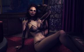 Картинка Девушка, Fallout 4, Кружевное белье
