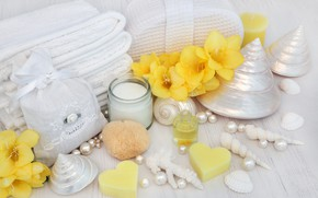 Картинка цветы, мыло, ракушки, flowers, bath, still life, candle, spa, salt, seashells