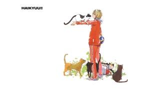 Картинка кошки, мяч, белый фон, парень, сумка, спортивная форма, Haikyuu!!, Волейбол!, Kenma Kozume