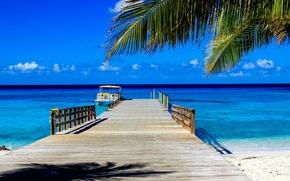 Картинка море, пальма, отдых, пирс