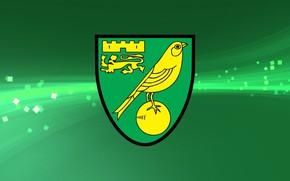 Картинка wallpaper, sport, logo, football, Norwich City