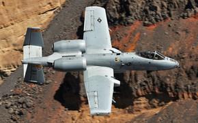 Картинка Thunderbolt II, одноместный, A-10C, двухдвигательный штурмовик, Бородавочник