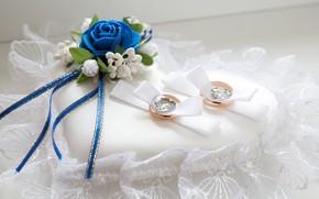 Картинка цветок, кольца, свадьба, декор