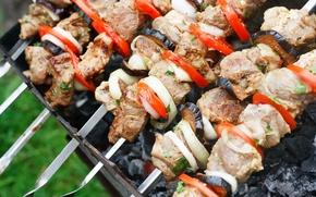 Картинка мясо, овощи, шашлык