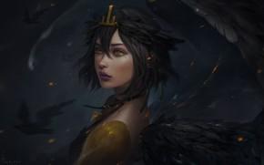 Обои взгляд, девушка, птицы, крылья, арт