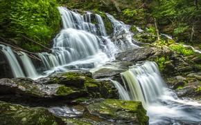 Картинка лес, вода, камни, водопад, поток