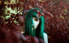 Обои фон, волосы, цвет, модель взгляд