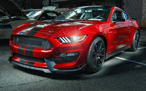 Обои Mustang, Ford, Shelby, GT350