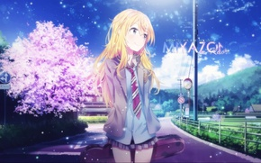 Картинка anime, sunny day, sakura, blue sky, cute, particles, miyazono kaori, your lie in april