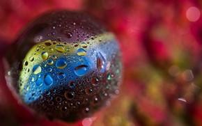 Картинка colors, glass, ball