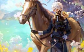 Картинка лошадь, весна, аниме, маска, арт, лиса, парень, Touken Ranbu, Touken ranbu, Танец Мечей