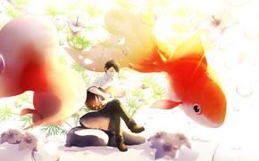 Картинка гитара, золотые рыбки, парень, под водой