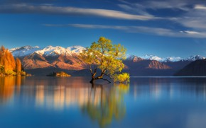 Картинка горы, Южные Альпы, дерево, Новая Зеландия, озеро, Lake Wanaka, New Zealand, Southern Alps, Озеро Уанака, …