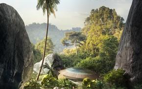 Картинка лес, пальма, скалы, человек, lagoon