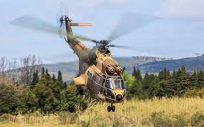 Картинка вертолёт, раскраска, летит, Puma