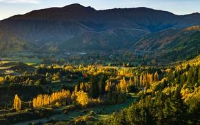 Картинка лес, горы, New Zealand, Arrowtown, Otago, Arrow Junction