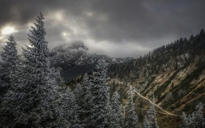 Картинка зима, деревья, горы
