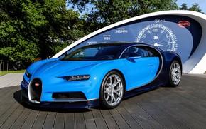Обои bugatti, blue, chiron, podium