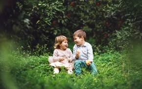 Картинка трава, дети, апельсин, смех, мальчик, девочка