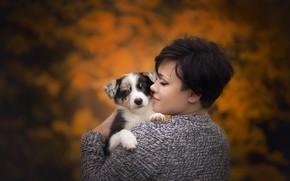 Картинка щенок, осень, девушка