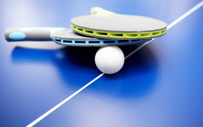 Обои racquet, Table tennis, tennis, Table, ball