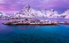 Картинка зима, море, небо, облака, снег, горы, Норвегия, залив, домики, Лофотенские острова, Lofoten